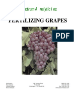 Fertilizing Grapes