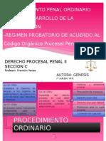 procesalpenaliigenesiscabriles-140716155048-phpapp01