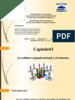 Grupo#1 La Cultura Organizacional y Su Entorno