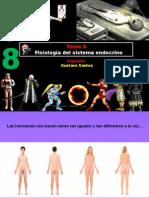 Clase 8 - Fisiología Endocrina