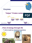 09enzymes2009.ppt