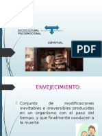 PROCESOS FISIOLÓGICOS - MORFOLÓGICOS.pptx