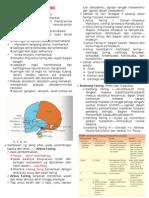 Resume Embriologi Kepala Dan Leher