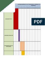 Cronograma de Actividades Camino a La Certificación