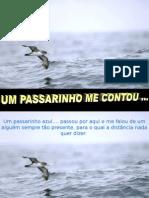 UmPassarinho