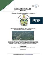 TDR-SBI-PUERTO-MAYO.docx