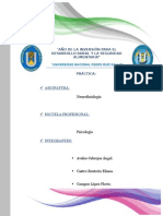 Funciones Del Tronco Encefalico - Grupo Flavio.docx Modificado