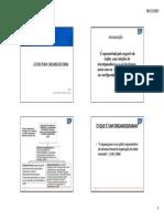 4 ESTRUTURA ORGANIZACIONAL.pdf