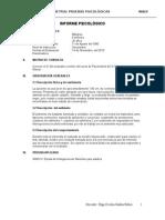 Informe-wais IV