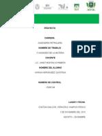 proyecto II itesco.docx