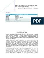 Trabajo Desviación Lateral (Tunelización) Del Pene