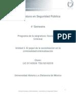 Unidad 3. El Papel de La Socialización en La Criminalidad-criminalización