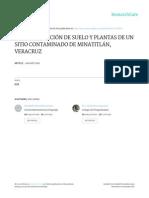 Caracterización de Suelo y Plantas de Un Sitio Contaminado de Minatitlán, Veracruz