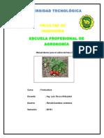manual  tecnico para el cultivo de  fresa