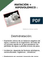 DESHIDRATACIÓN + SHOCK HIPOVOLÉMICO