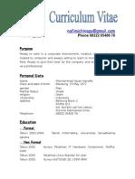 Curriculum Vita11e