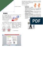 Enfermedades Sistema Endocrino
