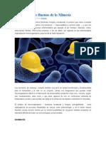Los Microbios Buenos de La Minería