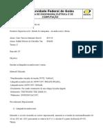 Relatório LAB IE Exp 01