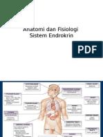 Anatomi Dan Fisiologi Sistem Endokrine