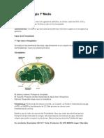 Resumen Biología 1