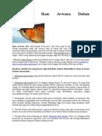 Memelihara Ikan Arwana Dalam Akuarium