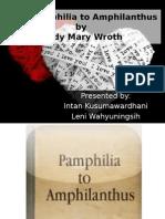 From Pamphilia to Amphilanthus Analysis