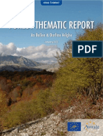 Forest Thematic Report