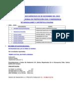 Informe Diario Onemi Magallanes 02.12.2015