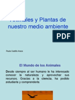 ANIMALES_Y_PLANTAS