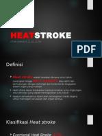 Heatstroke power point