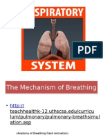 Respiratory System Powerpoint (1)