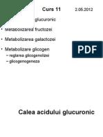 Metabolizare Hexoze  + glicogen