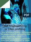 DNA Fingerprinting and Gel Electrophoresis