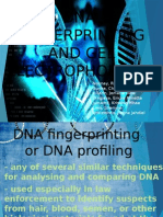 DNA Fingerprinting and Gel Electrophoresis
