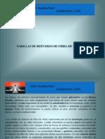 Presentacion  AST  en  Españolrevisado (5) Roman.pdf