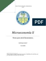 ApuntesMicroeconomía II. David Vazquez.pdf