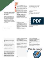 Plan de salud formas de vacunacion