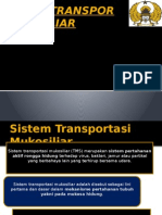 Sistem Transpor Mukosiliar