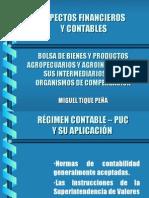 Miguel Tique Normas Contables