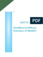 Herradicar El Hambre y La Pobreza en El Peru