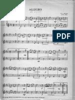 Duo Flauta-Allegro-W. a. Mozart.