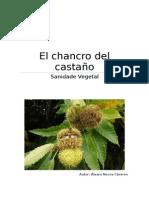 Chancro del Castaño. Sanidad Vegetal.