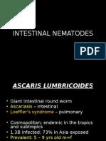 Dr. Maramion Intestinal_nematodes 2
