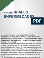 4-2 PRINCIPALES ENFERMEDADES.pptx