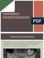 TUMORES ODONTÓGENOS maxilofacial