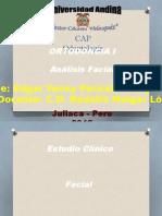 Analisis Facial Eddy Paricahua