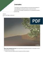 Cómo Construir Un Invernadero_ 27 Pasos (Con Fotos)