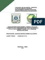 PRINCIPIO-PRACTICAS INTERMEDIAS.docx