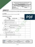 Proc de Audit Int